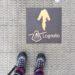 【スペイン巡礼後談】 靴の選択、大失敗でした!!